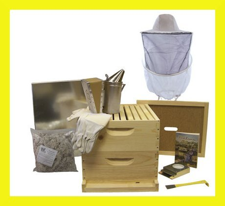 bee hive   10 frame deluxe beehive starter kit and